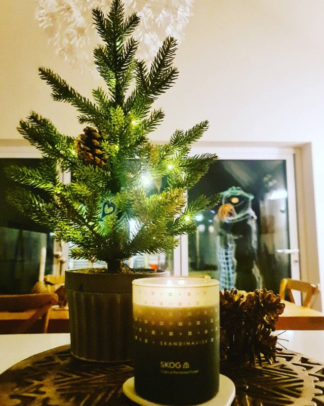 Beautiful scent of #skog Boreal Forest....Christmas tree in a candle 🥰